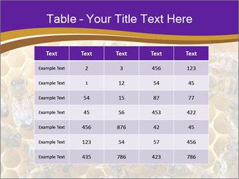 Beekeeping PowerPoint Templates - Slide 55