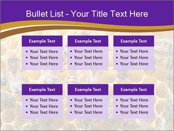 Beekeeping PowerPoint Templates - Slide 56