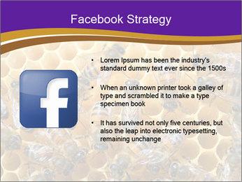 Beekeeping PowerPoint Templates - Slide 6