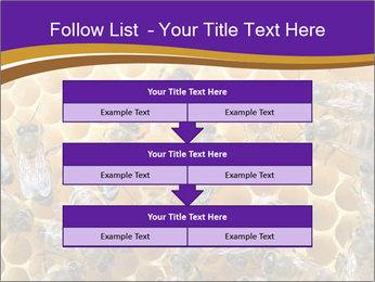 Beekeeping PowerPoint Templates - Slide 60