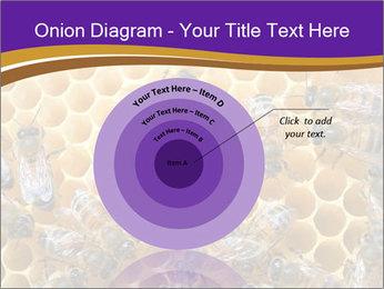 Beekeeping PowerPoint Templates - Slide 61