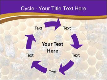 Beekeeping PowerPoint Templates - Slide 62