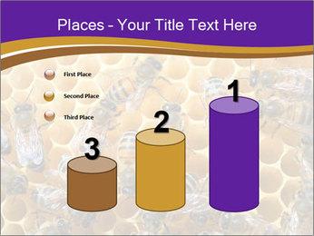 Beekeeping PowerPoint Templates - Slide 65