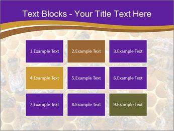 Beekeeping PowerPoint Templates - Slide 68