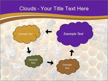 Beekeeping PowerPoint Templates - Slide 72