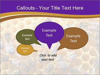 Beekeeping PowerPoint Templates - Slide 73