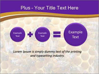 Beekeeping PowerPoint Templates - Slide 75