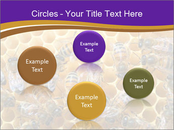 Beekeeping PowerPoint Templates - Slide 77