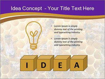 Beekeeping PowerPoint Templates - Slide 80