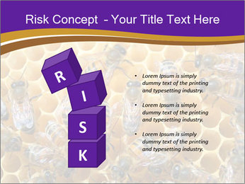 Beekeeping PowerPoint Templates - Slide 81