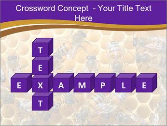 Beekeeping PowerPoint Templates - Slide 82