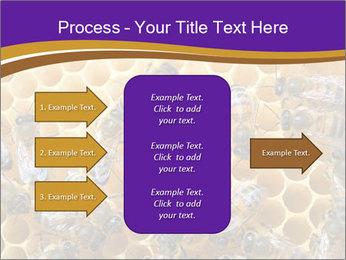 Beekeeping PowerPoint Templates - Slide 85