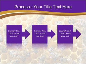 Beekeeping PowerPoint Templates - Slide 88