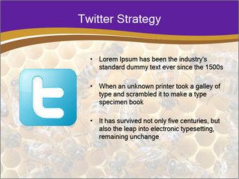 Beekeeping PowerPoint Templates - Slide 9