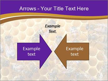 Beekeeping PowerPoint Templates - Slide 90