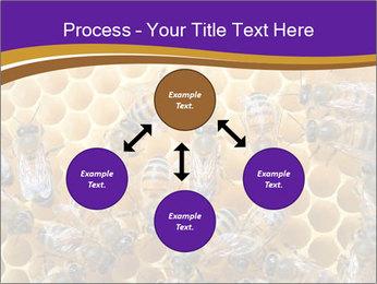 Beekeeping PowerPoint Templates - Slide 91