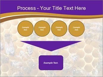 Beekeeping PowerPoint Templates - Slide 93