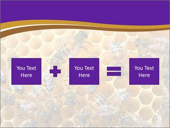 Beekeeping PowerPoint Templates - Slide 95