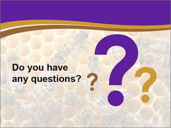 Beekeeping PowerPoint Templates - Slide 96