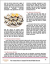 0000089327 Word Template - Page 4