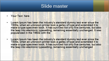 Forest In Sweden PowerPoint Template - Slide 2