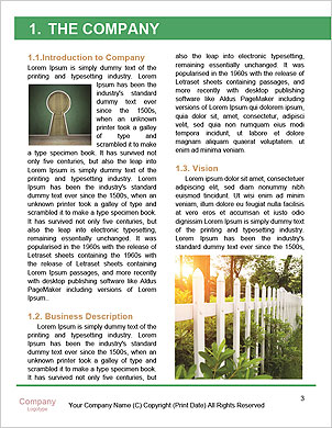0000089330 Word Template - Page 3
