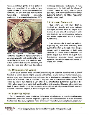 0000089334 Word Template - Page 4