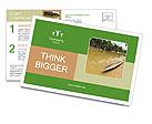 0000089335 Postcard Templates