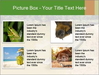 Boat In Amazon PowerPoint Templates - Slide 14