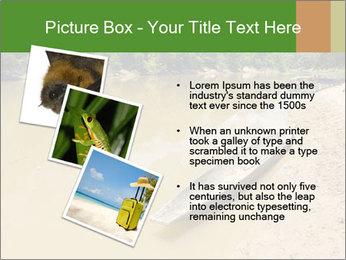 Boat In Amazon PowerPoint Templates - Slide 17