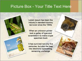 Boat In Amazon PowerPoint Templates - Slide 24