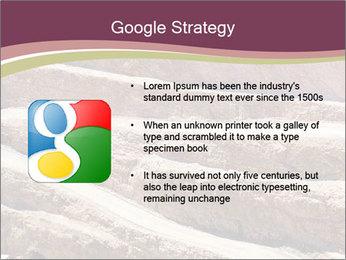 Australian Landscape PowerPoint Template - Slide 10