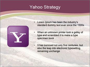 Australian Landscape PowerPoint Template - Slide 11