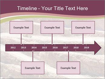 Australian Landscape PowerPoint Template - Slide 28