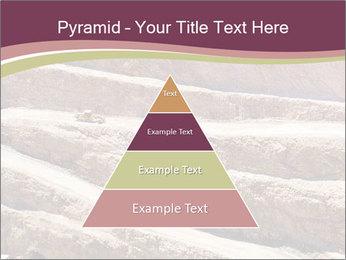 Australian Landscape PowerPoint Templates - Slide 30