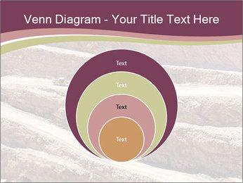 Australian Landscape PowerPoint Template - Slide 34