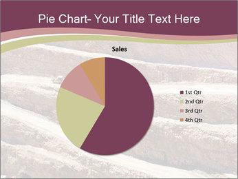 Australian Landscape PowerPoint Template - Slide 36