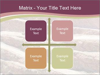Australian Landscape PowerPoint Templates - Slide 37
