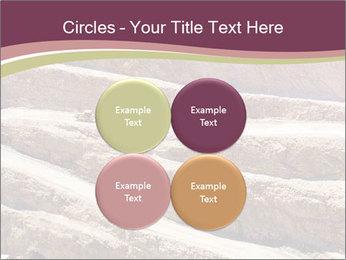 Australian Landscape PowerPoint Template - Slide 38