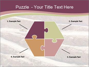 Australian Landscape PowerPoint Template - Slide 40