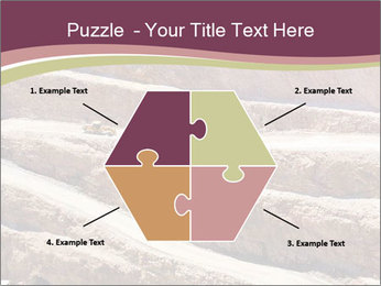Australian Landscape PowerPoint Templates - Slide 40