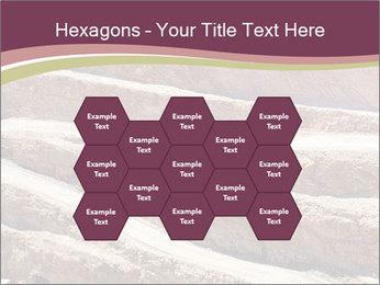 Australian Landscape PowerPoint Templates - Slide 44