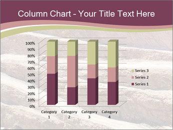 Australian Landscape PowerPoint Template - Slide 50