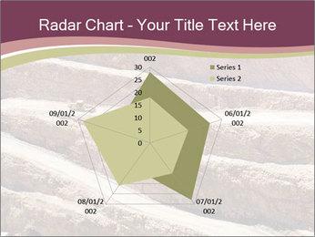 Australian Landscape PowerPoint Template - Slide 51