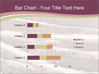 Australian Landscape PowerPoint Template - Slide 52
