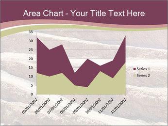 Australian Landscape PowerPoint Template - Slide 53