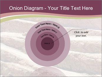 Australian Landscape PowerPoint Template - Slide 61