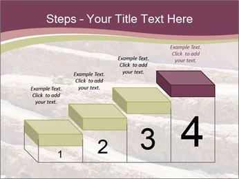 Australian Landscape PowerPoint Templates - Slide 64