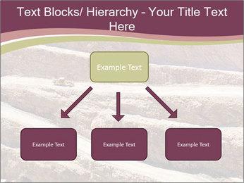 Australian Landscape PowerPoint Template - Slide 69