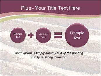 Australian Landscape PowerPoint Template - Slide 75